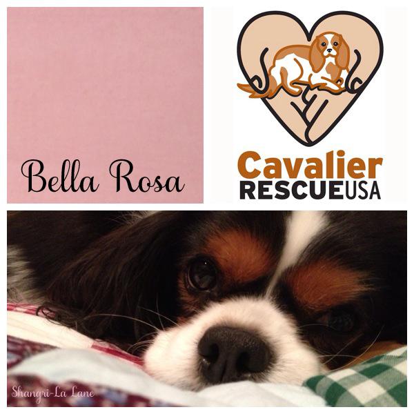 Bella Rosa w sig