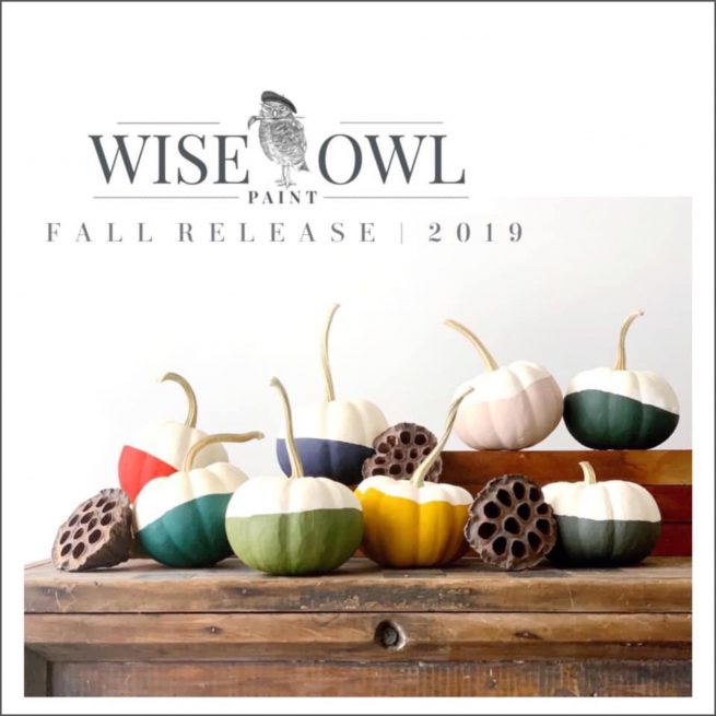 wise owl 2019 fall seasonal colors